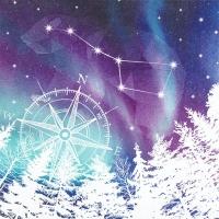 Servietten 33x33 cm - Northern Lights