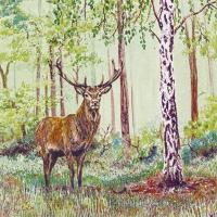 Servietten 33x33 cm - Wild Deer