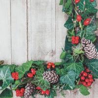 Servietten 25x25 cm - Ivy Wreath