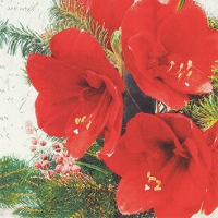 Servietten 25x25 cm - Red Amaryllis