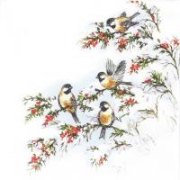 Servietten 33x33 cm - Sophy?s Birds