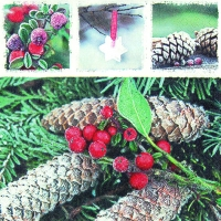 Servietten 33x33 cm - Red Frozen Berries