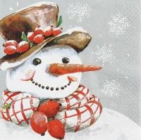 Servietten 33x33 cm - Frosty