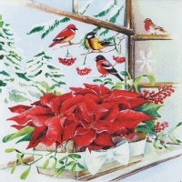Servietten 33x33 cm - Basket with Poinsettia