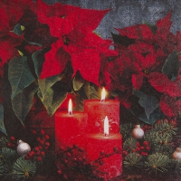 Lunch Servietten Candlelight Poinsettia