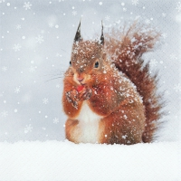 Servietten 33x33 cm - Snowy Squirrel