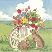 Servietten 25x25 cm - EASTER BARROW