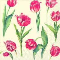 Servietten 33x33 cm - RED TULIPS cream