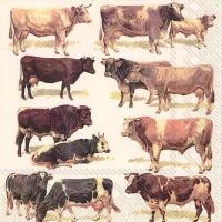 Lunch Servietten COWS