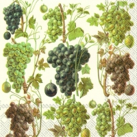 Servietten 33x33 cm - GRAPE HARVEST