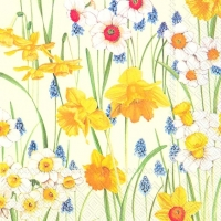 Servietten 33x33 cm - FLOWERS OF SPRING cream