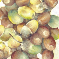 Servietten 33x33 cm - CROP OF ACORNS