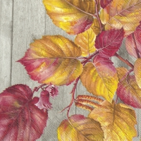 Servietten 33x33 cm - FALL GARDEN grey