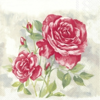 Servietten 33x33 cm - ROSE BOUTIQUE rot