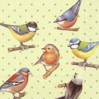 Servietten 33x33 cm - BIRDS AND DOTS green