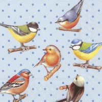Servietten 33x33 cm - BIRDS AND DOTS blue
