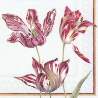 Servietten 33x33 cm - THREE TULIPS light blue