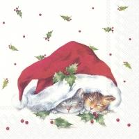 Servietten 33x33 cm - SWEET CHRISTMAS CATS
