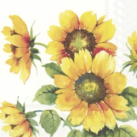 Servietten 33x33 cm - COLOURFUL SUNFLOWERS