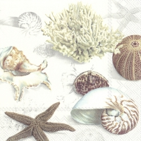 Servietten 33x33 cm - CLAMS AT THE BEACH cream