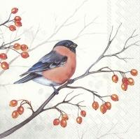 Servietten 33x33 cm - DREAMING WINTER BIRD