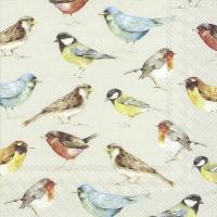 Servietten 33x33 cm - THE BIRDS cream