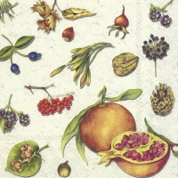 Servietten 33x33 cm - AUTUMN FRUITS