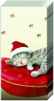 Taschentücher SANTA CAT cream