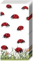 Taschentücher Marienkäfer