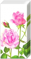 Taschentücher A ROSE FOR YOU