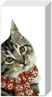Taschentücher - KITTY