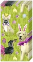 Taschentücher - BUNNY DOGS
