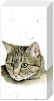 Taschentücher - FARMFRIENDS CAT