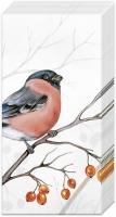 Taschentücher - DREAMING WINTER BIRD