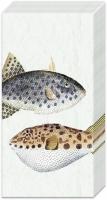 Taschentücher - FISH OF THE SEA light blue