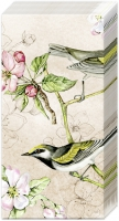 Taschentücher - BIRDS SYMPHONY cream