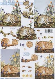 3D Bogen Katzen - Format A4