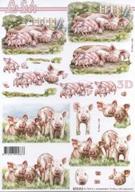 3D Bogen Schweine+Ferkel - Format A4