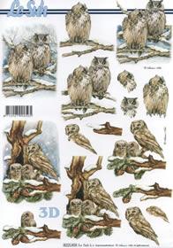 3D Bogen Eulen - Format A4