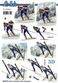 3D Bogen Format A4 - Skifahrer - Format A4