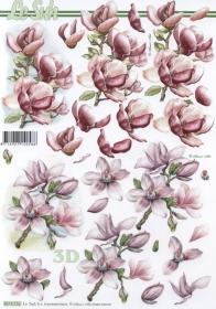 3D Bogen 2x Magnolien Format A4 - Format A4