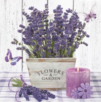 Servietten 33x33 cm - Lavender in a Wooden Pot