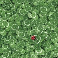 Servietten 33x33 cm - Clover Background with Ladybug