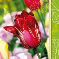 Lunch Servietten Tulips