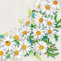 Servietten 33x33 cm - Daisy Frame