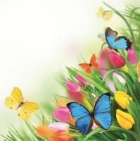 Servietten 33x33 cm - Tulips & Butterflies