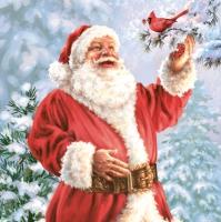 Servietten 33x33 cm - Fröhlicher Weihnachtsmann mit Vogel