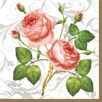 Servietten 33x33 cm - Rosa Centifolia Weiß