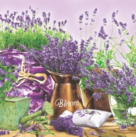 Servietten 33x33 cm - Blooming Lavender Violet