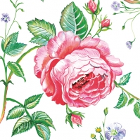 Servietten 33x33 cm - English Rose